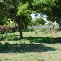 back garden sm